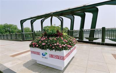 龙湖内环路桥上的花箱