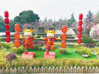 郑州:公园广场张灯结彩年味浓