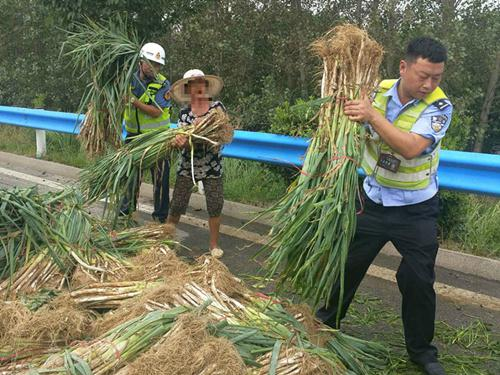 河南商丘:货车爆胎两吨蔬菜倾翻高速 交警变身搬运工