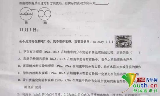 图为表情包试卷。中国青年网通讯员 程艺 供图