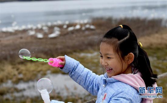 小朋友在三门峡黄河天鹅湖游玩(2018年11月17日摄)