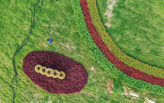 绿化工人正在养护花坛和草坪