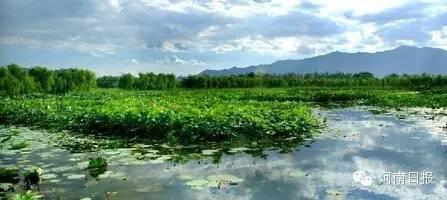 湿地公园面积25,226h㎡;湿地类型:人工;所在地:淅川县。
