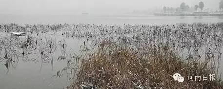 湿地公园面积1,335h㎡;湿地类型:湖泊;所在地:柘城县。