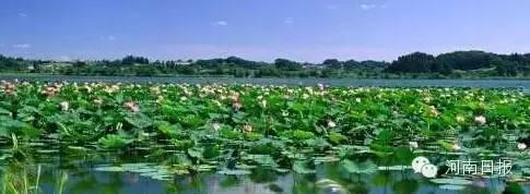 湿地公园面积752h㎡;湿地类型:河流;所在地:平桥区。