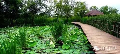 湿地公园面积2,442h㎡;湿地类型:河流;所在地:息县。