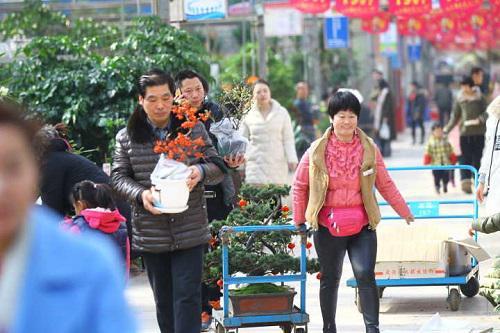 依托航运优势,非洲、南美洲等地进口花卉逐渐打开郑州市场