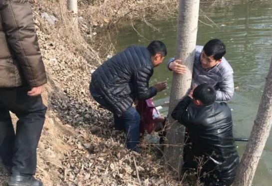 大河报·大河客户端 记者 杜文育 实习生 张艺潇 文图