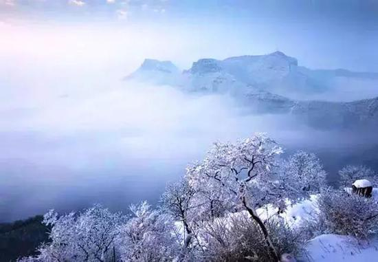 图片来源:云台山景区微信公众号