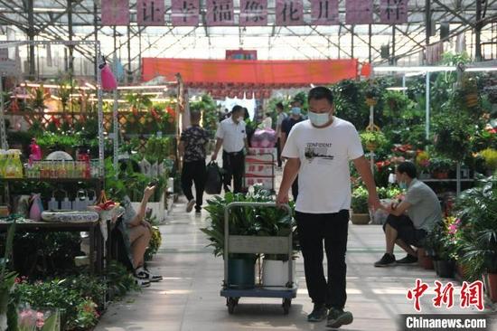 郑州花卉市场正在有序恢复(图)
