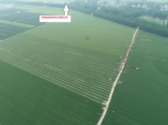 响应政府号召 助力脱贫攻坚——河南省金博农种业有限公司