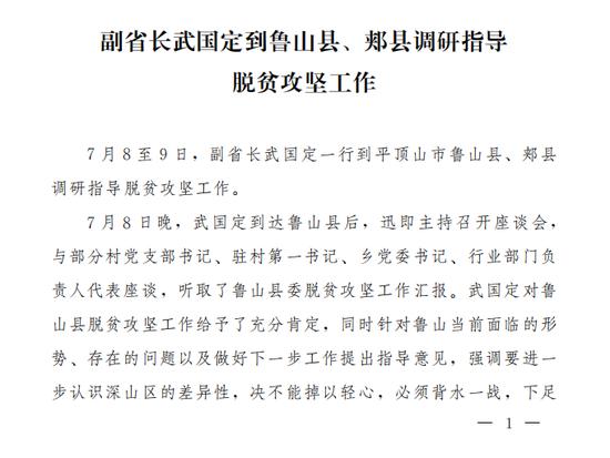 副省长武国定到鲁山县、郏县调研指导 脱贫攻坚工作
