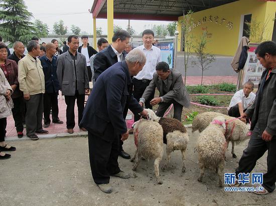 发起爱心募捐,为贫困户捐赠优质羊种。