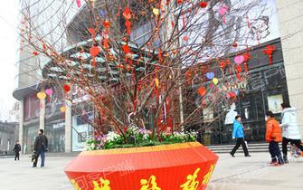 小年到年味浓 郑州街头张灯结彩迎新年