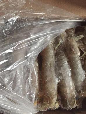 郑州遇上门推销皮皮虾骗局 虾体内全是冰