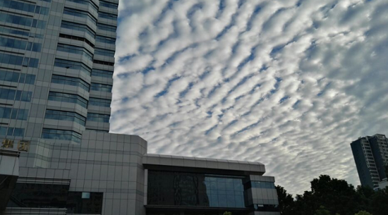 """大雨过后郑州天空出现朵朵""""棉花糖"""""""
