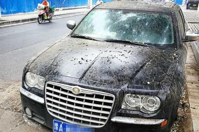 郑州施工路段车辆被陷搁置13天 谁来负责?