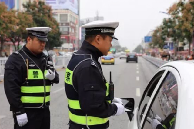 开车不礼让斑马线 漯河两天处罚177名司机