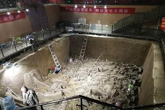 郑国三号车马坑考古创两项记录 一个坑出土122匹马