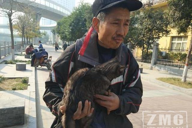 郑州男子街头溜猫 还大叫:老虎!走快点儿!