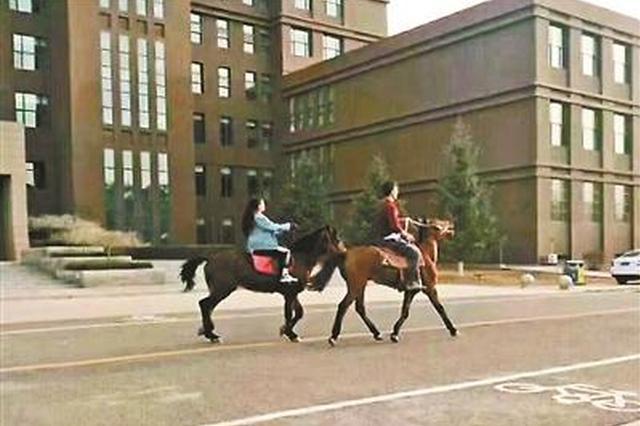 咋回事?内蒙古大学生情侣每天骑马上学