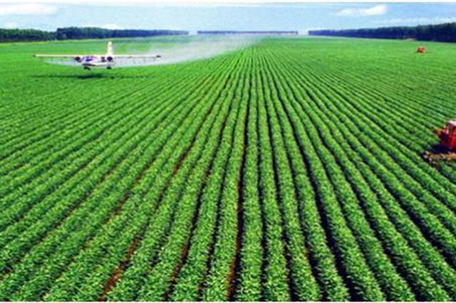 河南省农业科技转化成果丰硕 亮点纷呈
