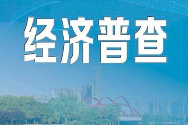 河南启动第四次全国经济普查 2020年年底前完成