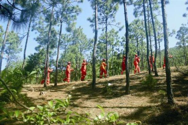 河南:到2020年为贫困人口提供2万个护林员岗位