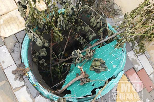 注意!郑州街头盲道上井盖有个大洞 看着真危险