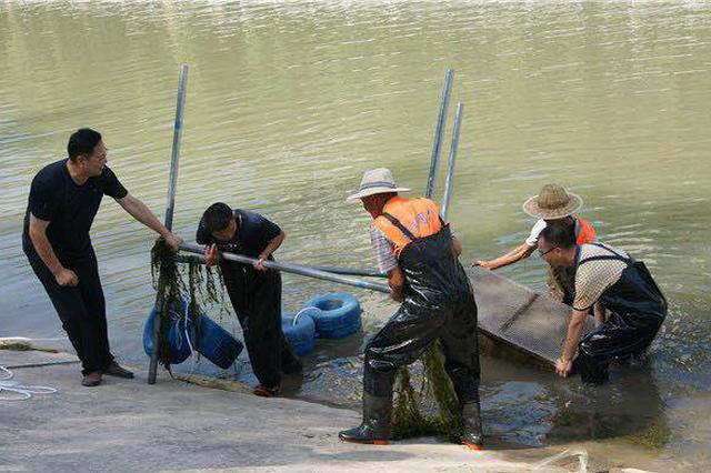 郑州推广高科技专治城区河道水质 东风渠为首个试点
