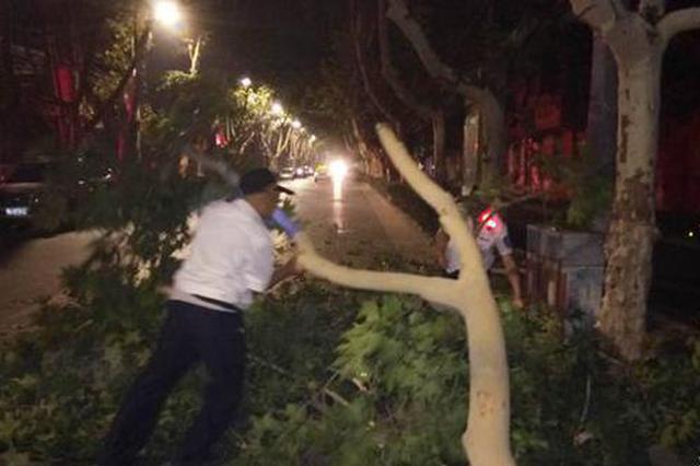 """太惊险! 郑州街头凌晨""""庞然大物""""突然砸向快车道"""