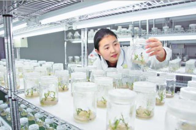 河南公布首批10家重大新型研发机构