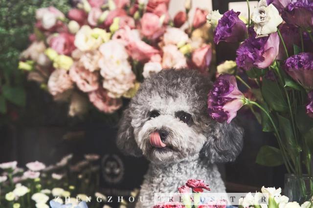 潮妹get一家文艺十足的花店,鲜花和爱都要收下!