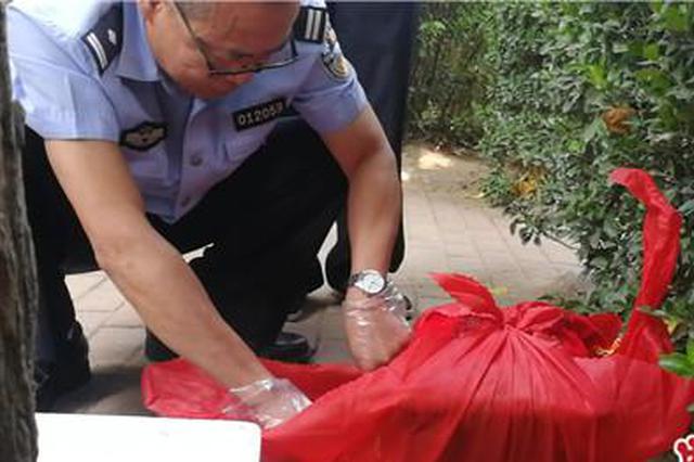 郑州游园内惊现骨灰盒吓坏市民 民警称20多年头次见