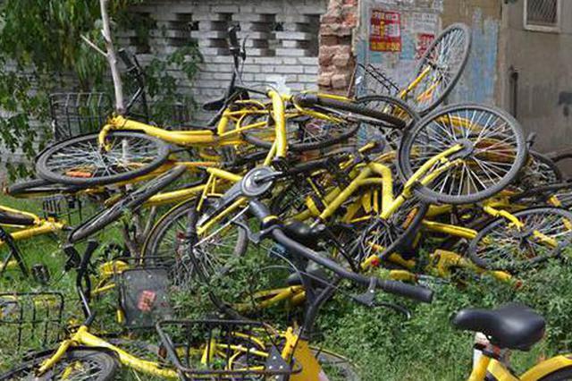 大批废旧单车堆积郑州滨河公园 看着让人心疼