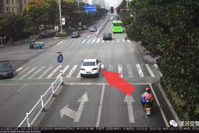 漯河一周交通违法车辆大曝光 快来看看你上榜没?