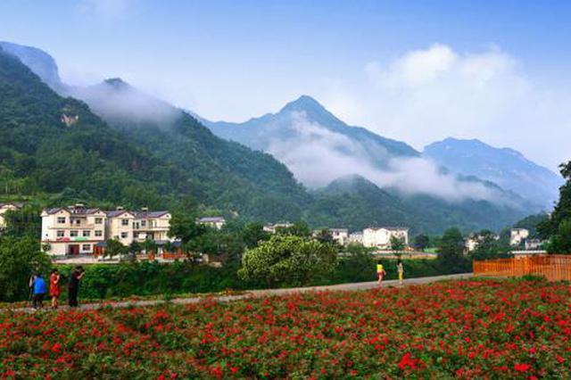 河南35个乡村被认定为乡村旅游特色村 有你家乡么