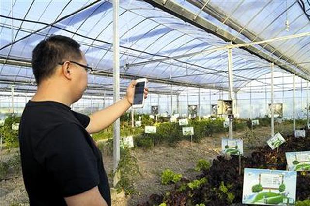 河南省所有贫困自然村年底前将实现光纤接入全覆盖