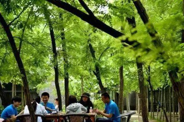 郑州市民多样选择过长假 收获最多是美好回忆