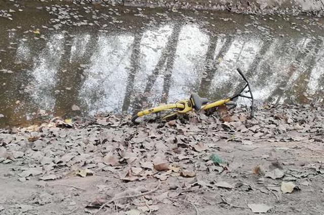 郑州这些把共享单车扔河里的人 你们是咋想的?