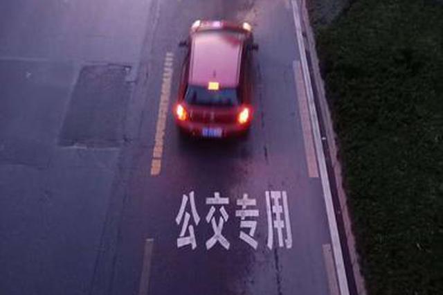 避开公交专用道习惯要培养 郑州交警首月以教育为主