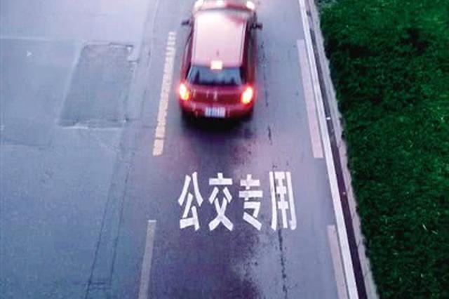 鄭州占用公交專用道將被罰 警方:右轉借道不抓拍
