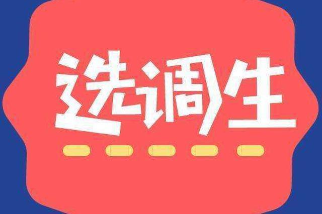 2019年河南省非定向选调生计划招录600人