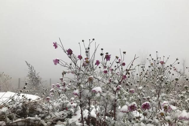 郑州新密和巩义迎来2018年入冬第一场雪