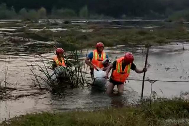 放羊大爷和羊群被困河中央 消防员又救大爷又抱羊