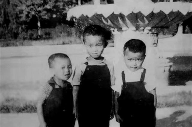 组图:薄薄相片袋装满 老郑州人的幸福和欢乐