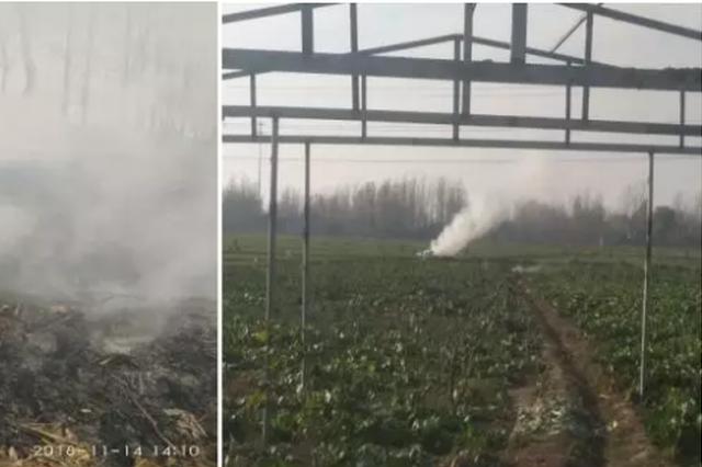 濮阳市焚烧现象普遍 环境污染严重被点名