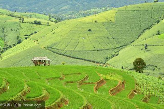河南省补充6批耕地指标 起始价5万元/亩 共计3300亩