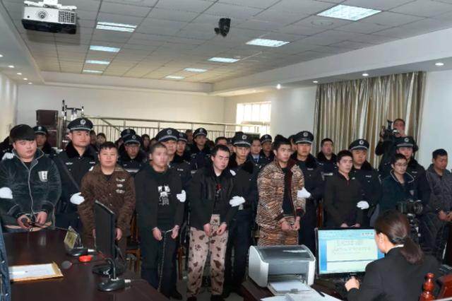 嵩县恶势力犯罪集团充当地下出警队 庭审现场公开