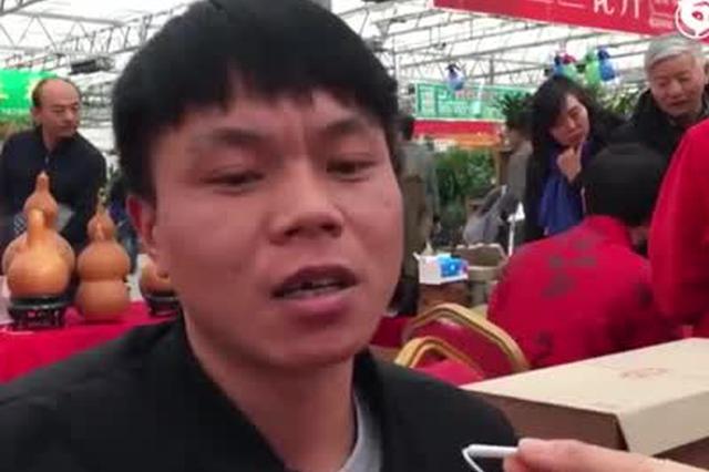 郑州男子把宠物猪做成标本:10万都不卖